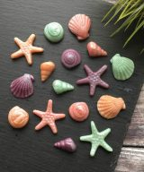 edible shell decorations